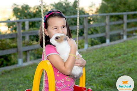 coniglio nano in giardino conigli in giardino vivere all aperto senza rischi