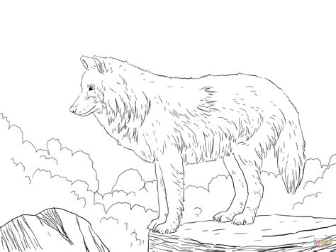 wolf pictures to color realistic wolf coloring pages to print coloring home