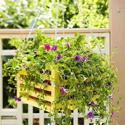 wood container garden 17 best images about pallet hanging baskets on