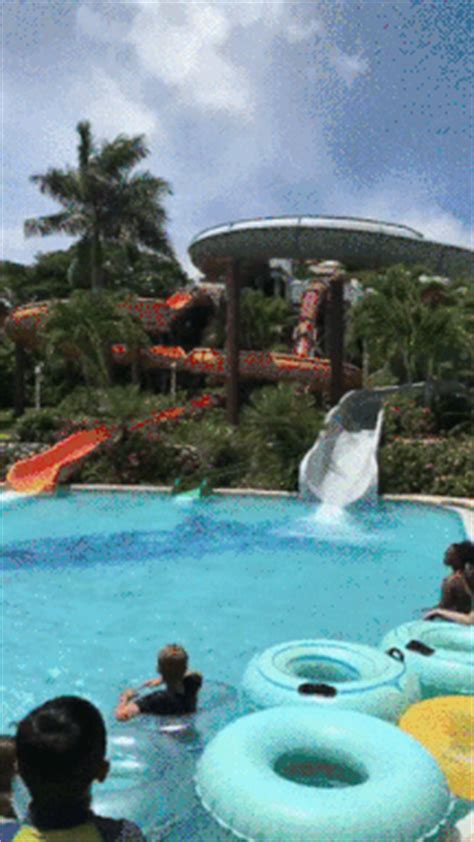 Gifs Meme - water slide gifs find share on giphy