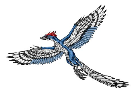 Wall Art Sticker 8 archaeopteryx hd wallpapers background images