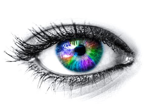 eye on design the way eyes work discovery eye foundation