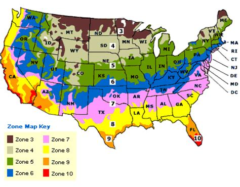 gardening zones usa tea zone categories of usa navsarjan visa services pvt ltd