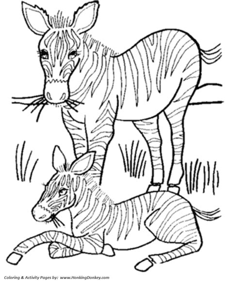 coloring pages of animals and their homes animals coloring pages coloring pages animals and their