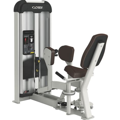 cybex ab bench cybex ab bench 28 images cybex prestige strength vrs hip abduction gym source