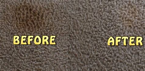 Cleaning Rugs With Baking Soda by How To Clean Carpet Stains With Baking Soda Homeaholic Net