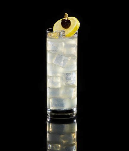 tom collins bottle tom collins recipe with tanqueray no ten tanqueray gin