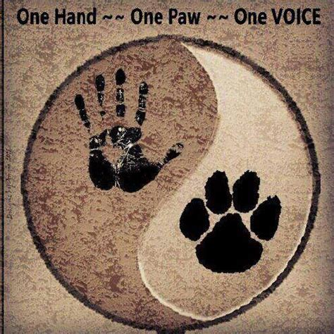tattoo against animal cruelty 25 best ideas about animal rights tattoo on pinterest