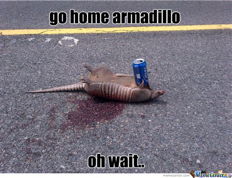 Armadillo Meme - go home armadillo oh wait by tourguide67 meme center