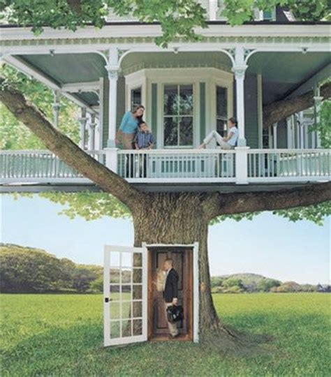 real treehouse a real tree house tree houses tree cs pinterest