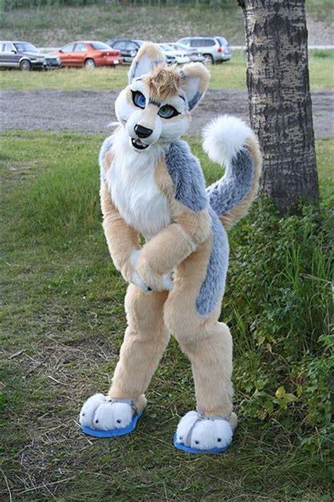Silver Huskywolf   WikiFur, the furry encyclopedia