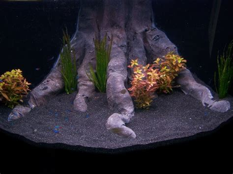 Diy Aquarium Decorations by Diy 3d Corner Background Aquarium Cichlids Photo And Aquarium