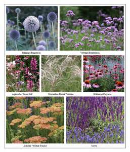 Formal Cottage Garden - ian barker garden design perennial garden inspiration