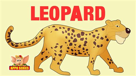 animal sounds leopard youtube