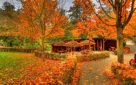 autumn colors landscapes autumn fall color wallpaper 1920x1200 37358