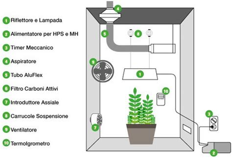 coltivazione indoor armadio allestire il growbox completo botanica urbana grow shop