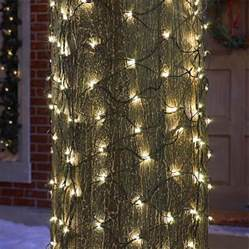 lights on tree trunk tree trunk net lights tree trunk lights