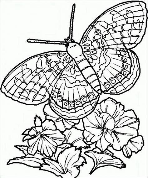 disegni sui fiori farfalle da colorare disegni gratis