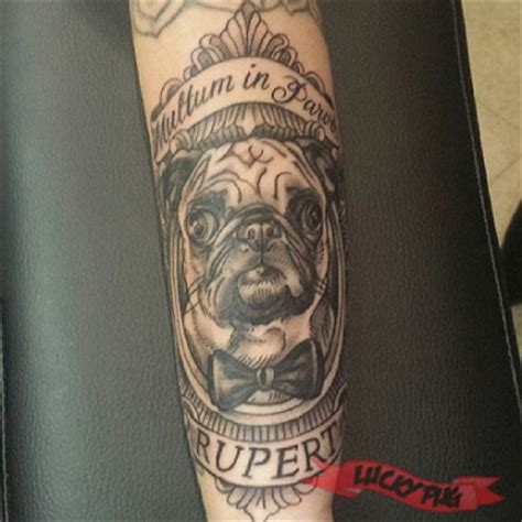 Tattoo Prices Kingston Ontario | black and grey arm pug tattoos black realistic