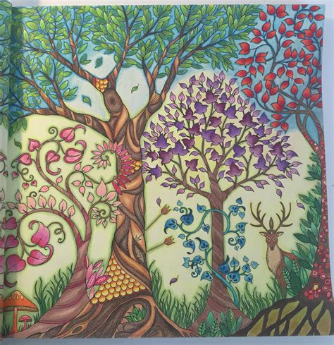 secret garden coloring book colored pencil johanna basford trees from enchanted forest colored by