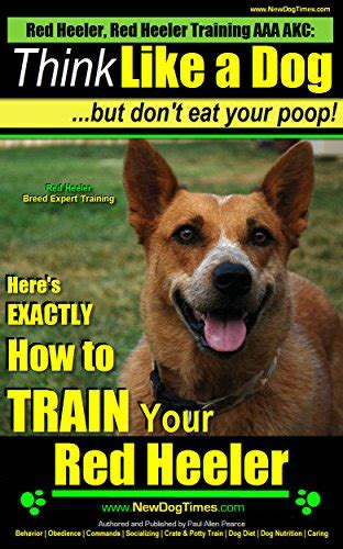 cockapoo expert think like a here s exactly how to your cockapoo books heeler heeler aaa akc think like a