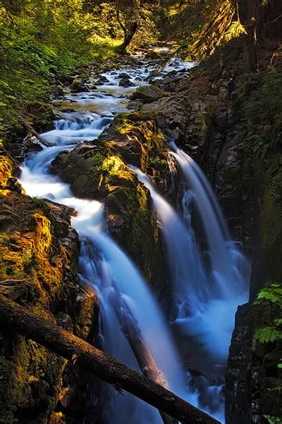 olympic national park photo gallery photography
