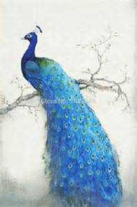 chinese peacock drawing