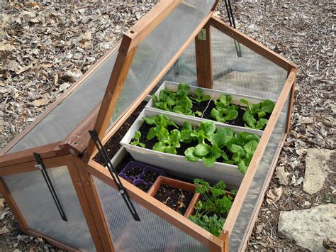 Cold Frame Gardening by The Phytophactor Early Season Gardening Cold Frame