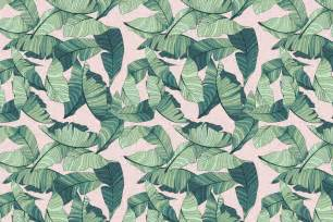Pink and green tropical leaf wallpaper murals wallpaper
