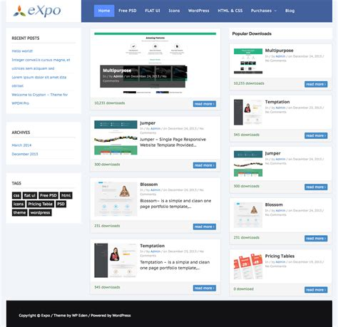 wordpress themes free download professional 2014 expo theme for wordpress download manager pro