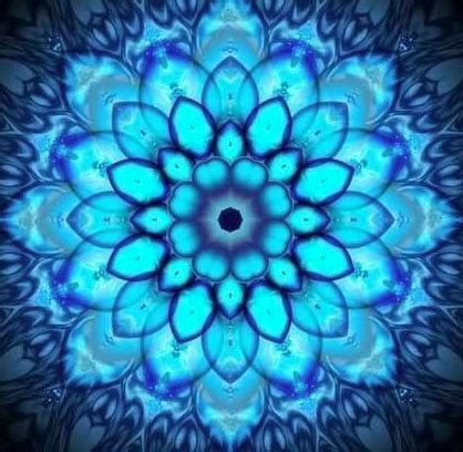 What Does Blue Lotus Do What Do The Different Colored Lotuses Represent