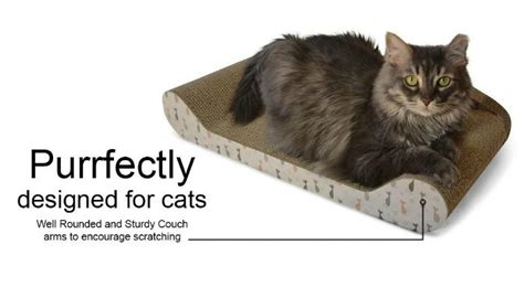 kitty couch win a kitty couch from feline be mine arv 35 ends 9