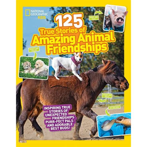 125 true stories of 142630918x 125 true stories of amazing animal friendships shop national geographic