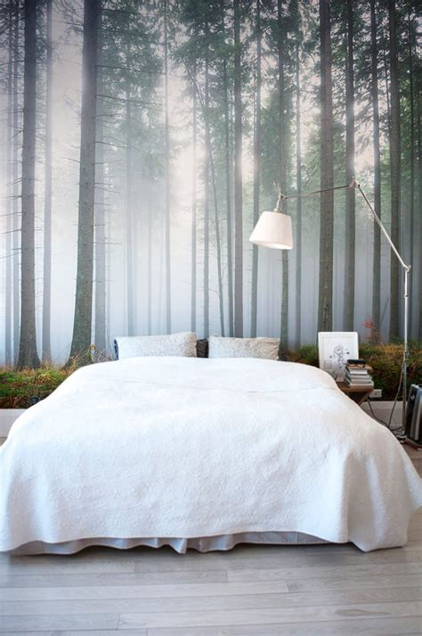 forest wallpapers   breathe life   home