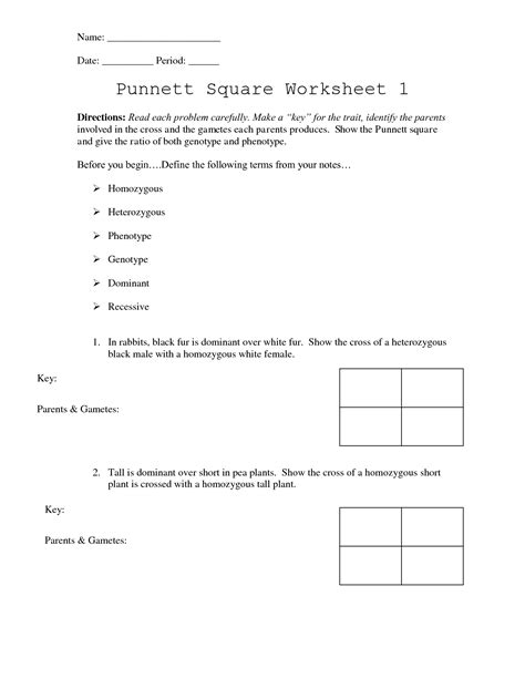 Worksheet Answers by 28 Punnett Square Worksheet 1 Answer Key Punnett Square