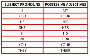 possessive adjectives worksheet abitlikethis