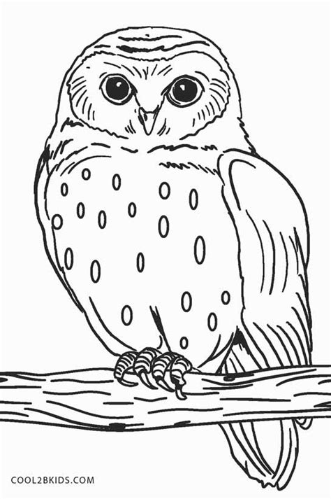 coloring page snowy owl free printable owl coloring pages for kids cool2bkids