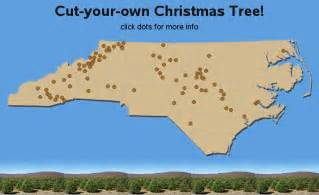 cut your own christmas tree farms in north carolina nc