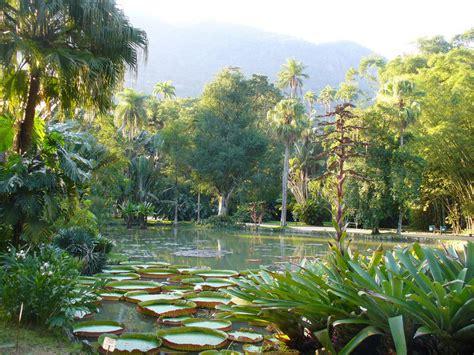 botanical garden  rio microtravelling