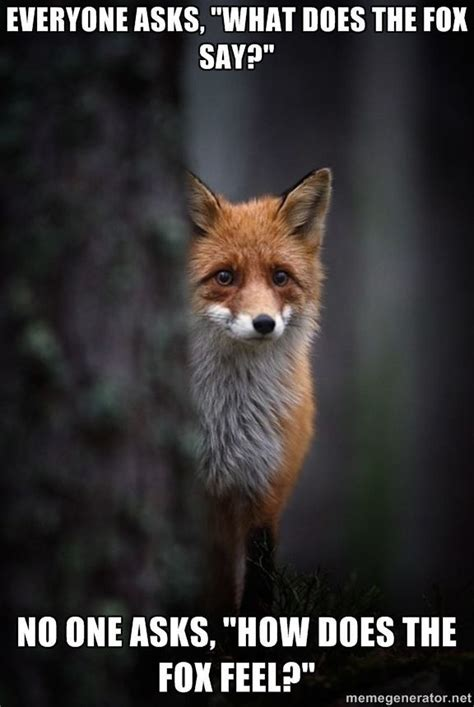 What Does The Fox Say Meme - i guess he feels foxy meme collection