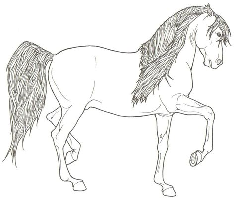 coloring pages of horses rearing friesian coloring pages