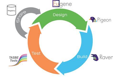 cicli testi design of quantitative surveys images