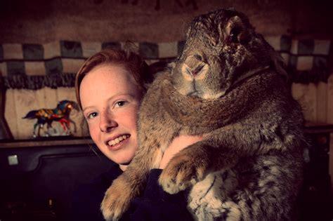 come si chiama la gabbia dei conigli curiosit 224 pesa pi 249 di 20kg e si chiama ralph 232 il