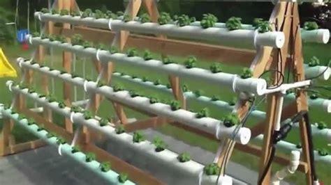 cara membuat hidroponik dari jerigen cara keren menanam sayur secara hidroponik vidio com