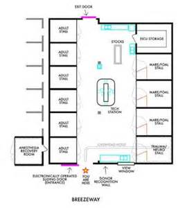 Icu Floor Plan Floor Plan For The New State Of The Equine Intensive