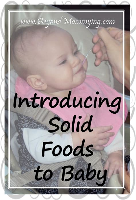 introducing to baby introducing solid foods to baby beyond mommying