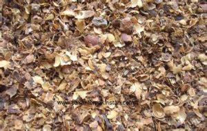 Fermentasi Kulit Kopi Sebagai Pakan Ternak potensi pemanfaatan kulit kopi untuk pakan ternak alternatif