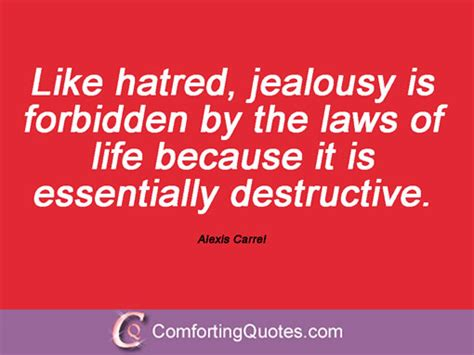 jealousy a forbidden books comforting quotes part 6