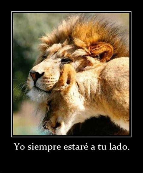 imagenes de leones tristes a tu lado siempre
