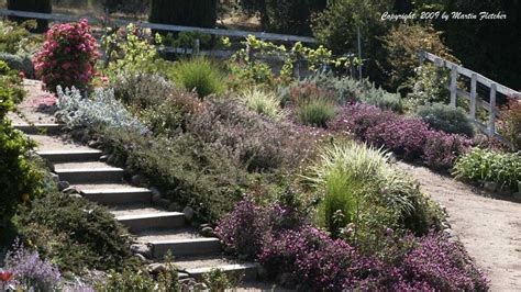California Gardening by Drought Tolerant Plants List California Gardens